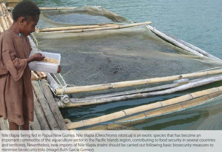 What is aquatic biosecurity, and what is its relevance for Pacific Islands region?