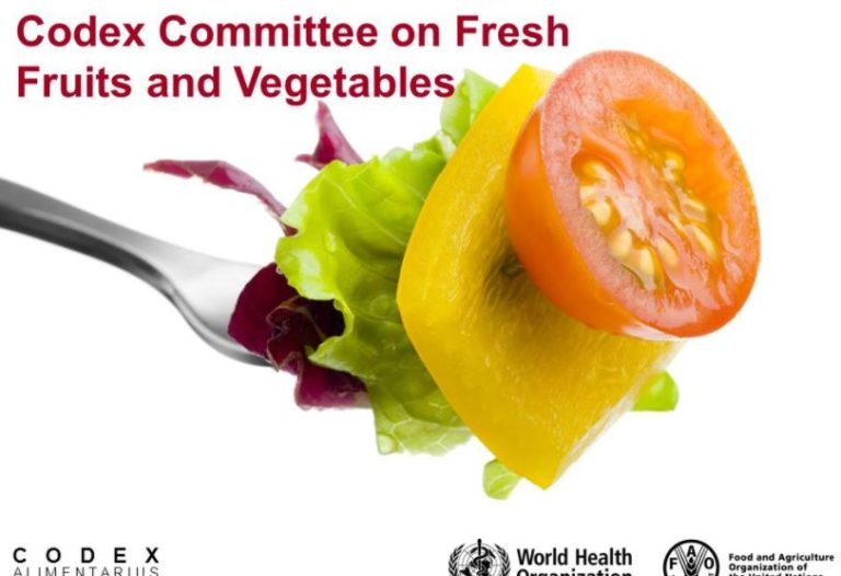 Food Safety – CODEX Alimentarius